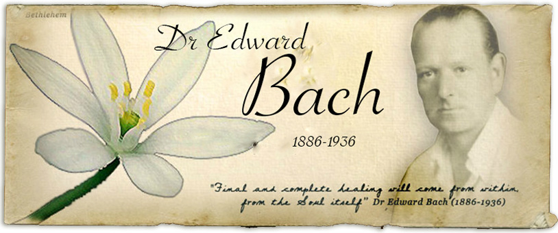 An Introduction to the Bach Flower Remedies